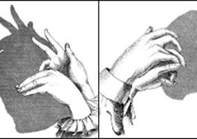 Saiba como criar sombras de animais com a mão