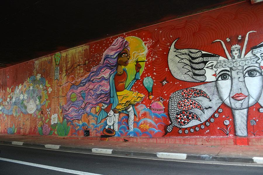 Mural-de-grafite-na-23-de-maio (18)