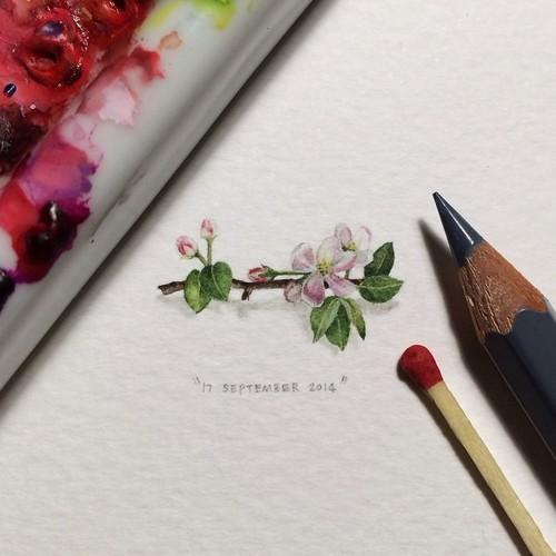 Micro-Pinturas (4)