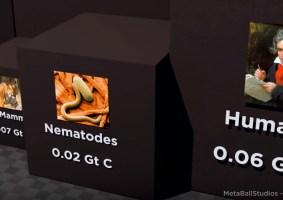 Vídeo faz comparação da biomassa na Terra em carbono