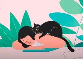 Tirar uma soneca: Quanto tempo devemos cochilar?