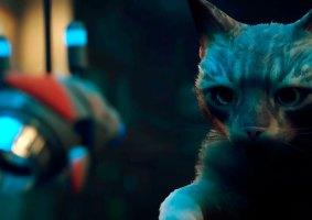 Stray: Veja o trailer de gameplay do jogo em que você é um gato