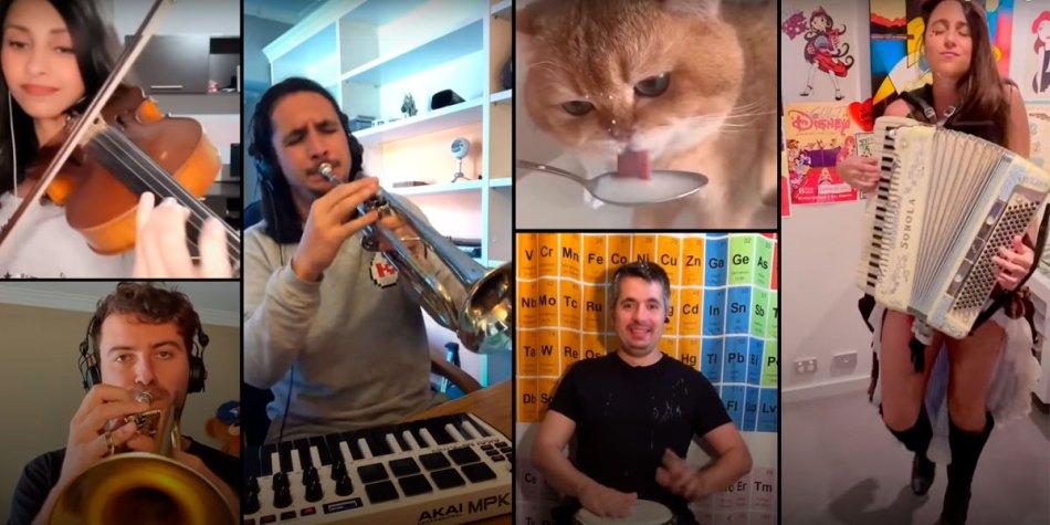 The Kiffness, o Youtuber que faz remixes com gatos e animais