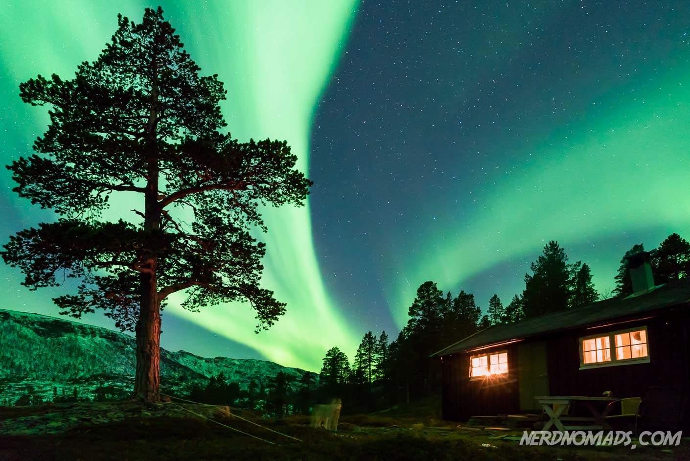 Fairbanks Alaska Northern Lights Forecast
