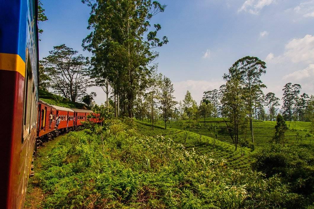 The World`s Most Beautiful Train Trip?  – Ella To Kandy