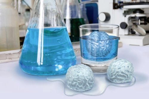 cervelli di ghiaccio