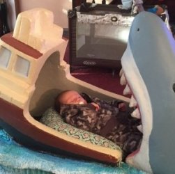 squalo culla
