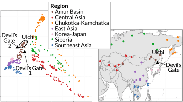 East Asia genome map