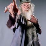 The Dumbledore (a tassel hat)