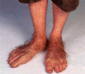 Or, in the absence of shoes, hairy Hobbit feet.