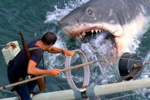 """Bruce"" –Jaws"