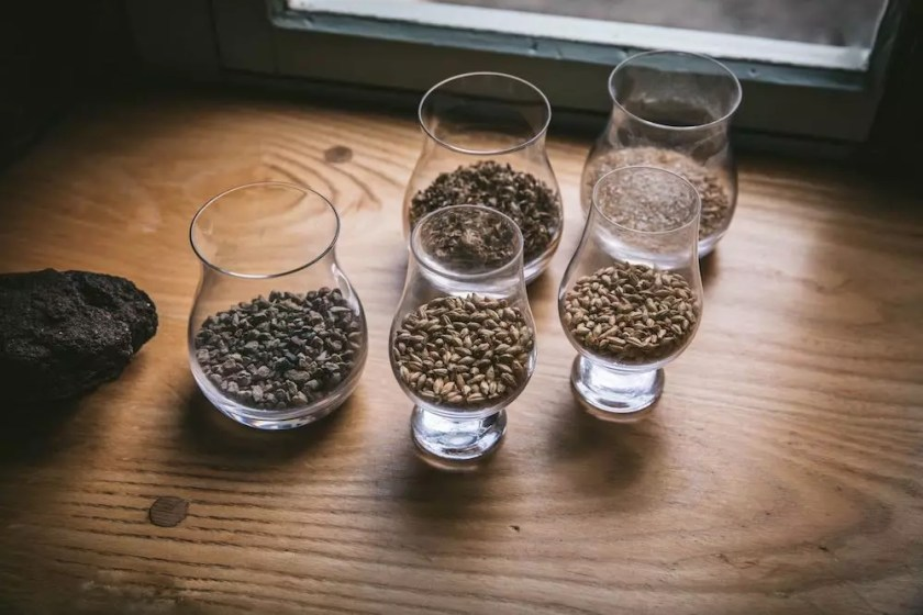 Glasses containing malted barley grains
