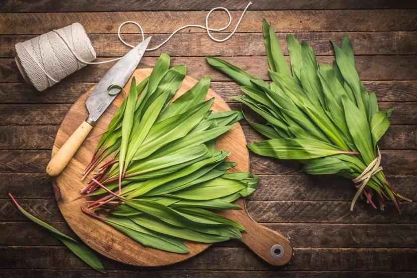 Ramps (wild garlic)