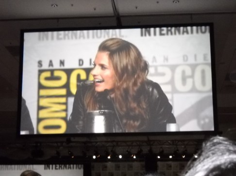 Actress Stana Katic was announced as the voice of Talia al-Ghul in the upcoming video game Batman: Arkham City.