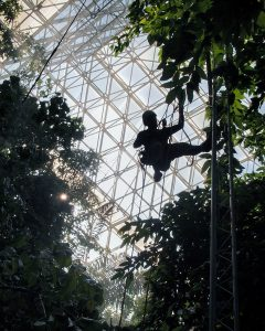 """Researchers in Biosphere 2's tropical forest biome can use the enclosure's """"space frame"""" to climb above the forest and drop down into any part of it – a luxury not enjoyed in the field. (Photo courtesy of Tyeen Taylor)"""