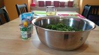 Paeroka's Green Sauce_14