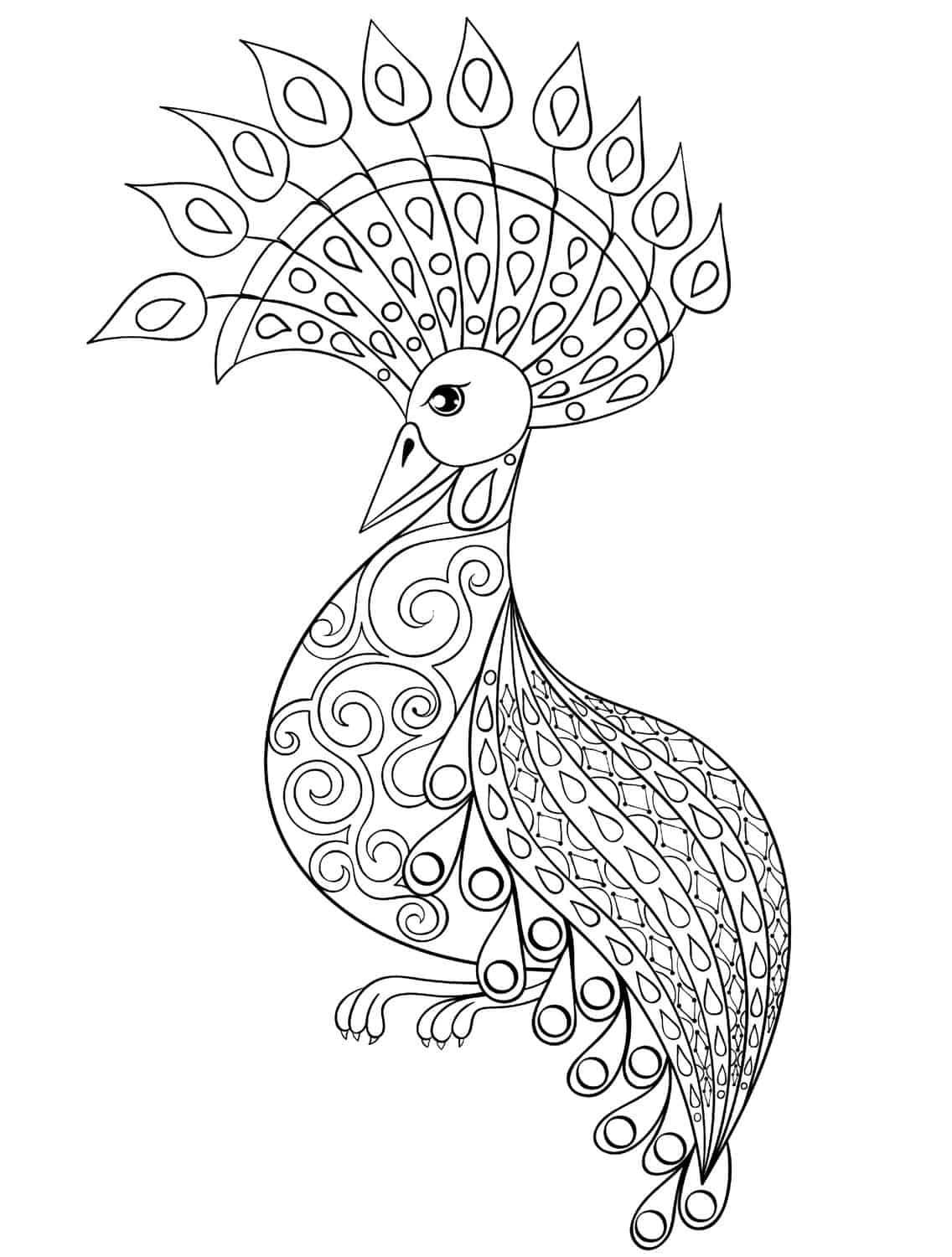 Aninimal Book: Adult Coloring Peacock Feather Coloring Pages