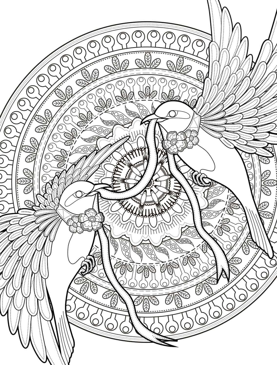 coloring books coloring pages for adults and coloring pages