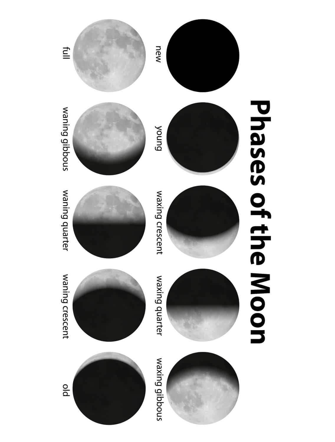 Printable Moon Calendar Worksheet