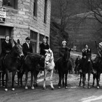 Equestrian Librarians