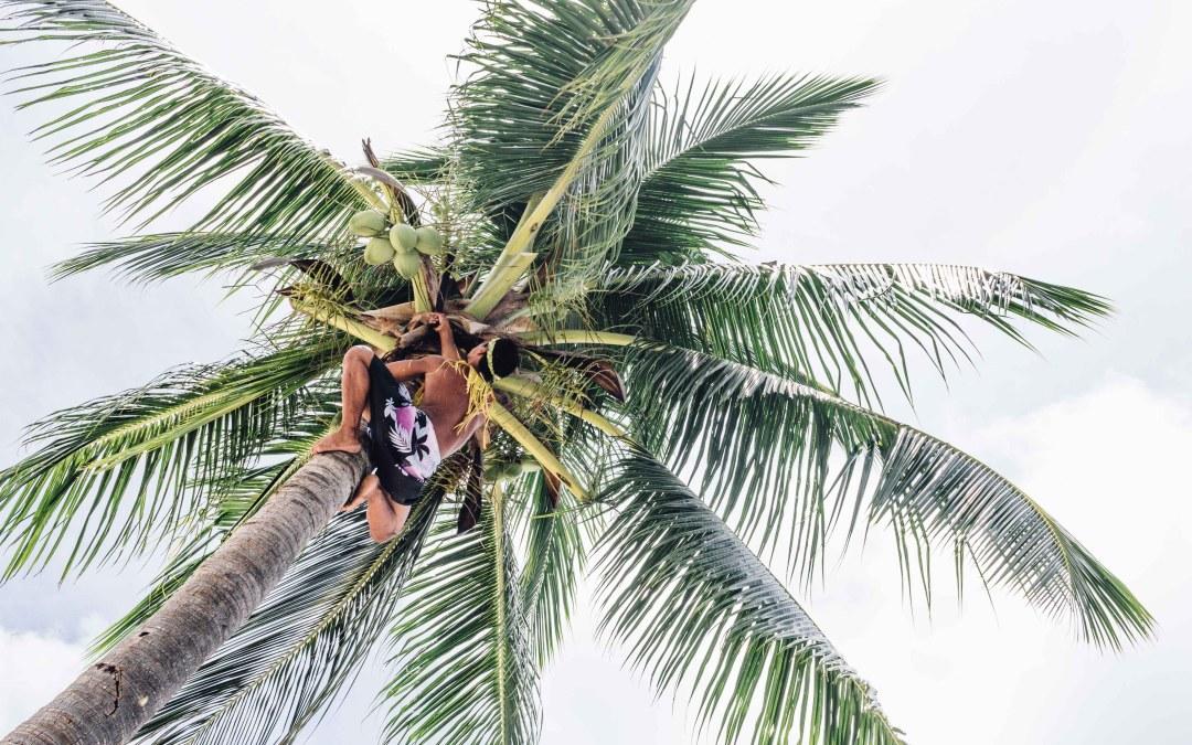 Photo Diary: Aunu'u Getaway
