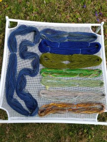 The long skein and the topmost skein are spun from roving purchased in Alaska. From Top-Bottom: Sapphire and Emerald Merino from Uniquities. The last four are samples from: Hobbledehoy Fibers, The Colorful Flock, Kim Dyes Yarn, and 222 Handspun