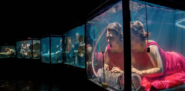 Plartforma menų festivalis - Aquasonic