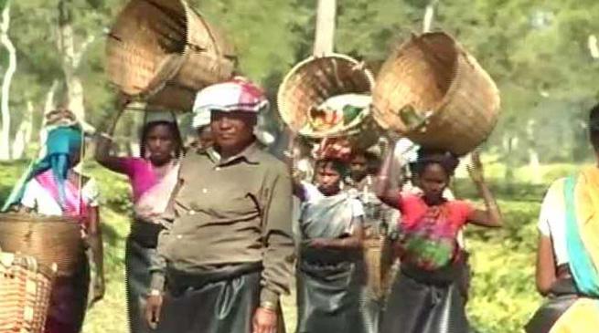 चाय बागानों में खुलेंगे दो सौ हाई स्कूल – हिमंत