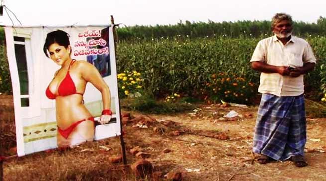किसान ने खेत में लगाया सनी लियोन की बिकनी वाली तस्वीर- जानिए कारण