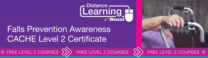 00762_Distance_Learning_Course_Sheet_Level_2_Fall_Awareness_AW
