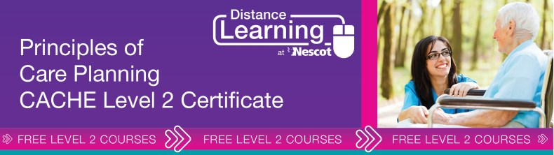 00762_Distance_Learning_Course_Sheet_Level_2_Principles_Care_Planning_AW