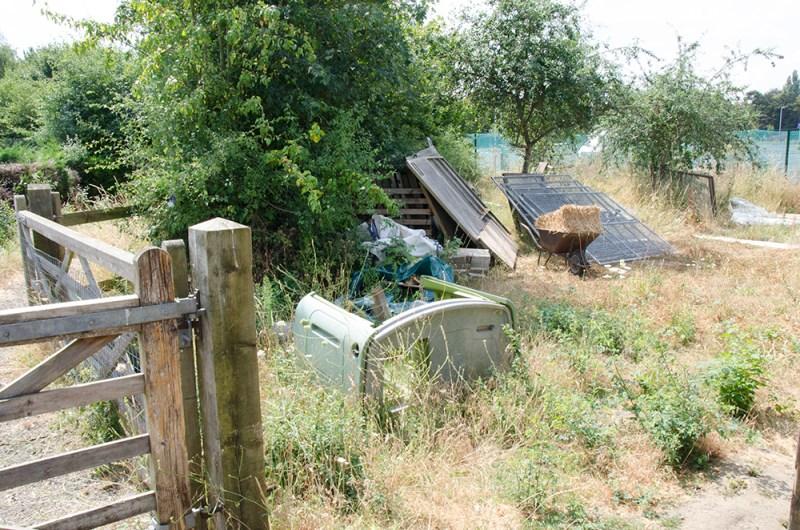Film location nescot ewell epsom farm rustic animals