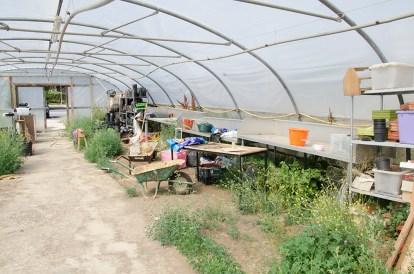 greenhouse rustic farm 2