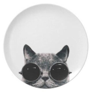 cool_cat_dinner_plates-rac824f528d2846199b1a85af70a41624_ambb0_8byvr_324