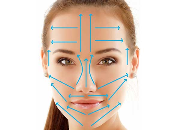Схема массажных линий для проведения косметического массажа