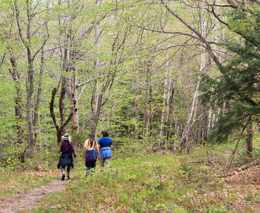 dance camp-nature retreat-nature walk-sacred dance-gathering