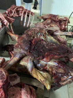 В Самарской области в два раза увеличилось количество забракованного мяса