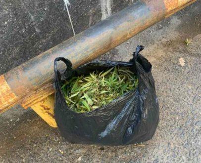 В Тольятти сотрудники патрульно-постовой службы полиции изъяли у местного жителя мешок марихуаны