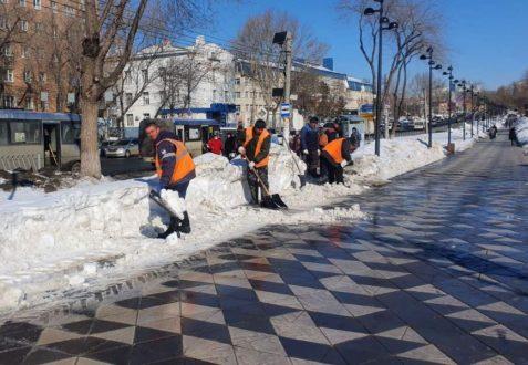 В Самаре ежедневно следят за качеством содержания нового сквера на улице Авроры