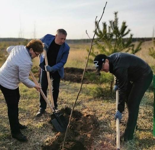 Дмитрий Азаров посетил мемориальный комплекс «Лес памяти»