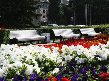 В Тольятти появится больше цветов и мест отдыха