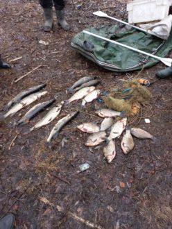 В Сызранском районе дознаватели возбудили уголовное дело по факту незаконного лова рыбы