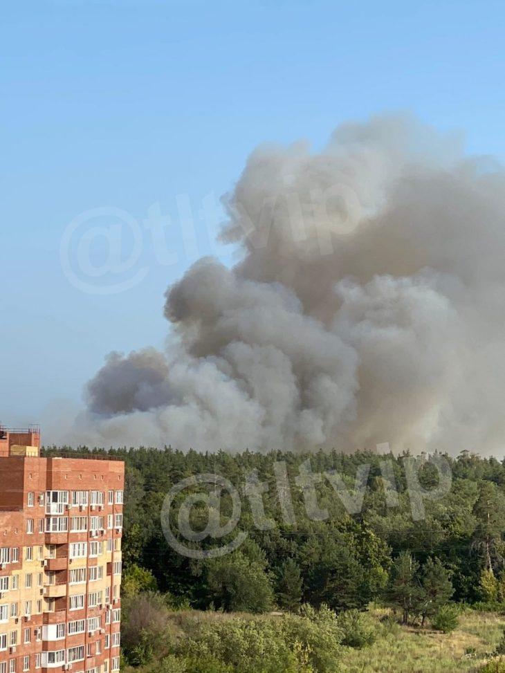 В Тольятти оперативные службы мобилизованы для тушения пожара в городском лесу