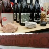 #conosciletueisole #geoevento #castellaro - 6