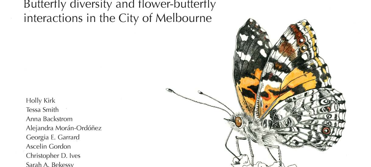 Our City's Little Gems – Butterfly diversity and flower-butterfly interactions in the City of Melbourne