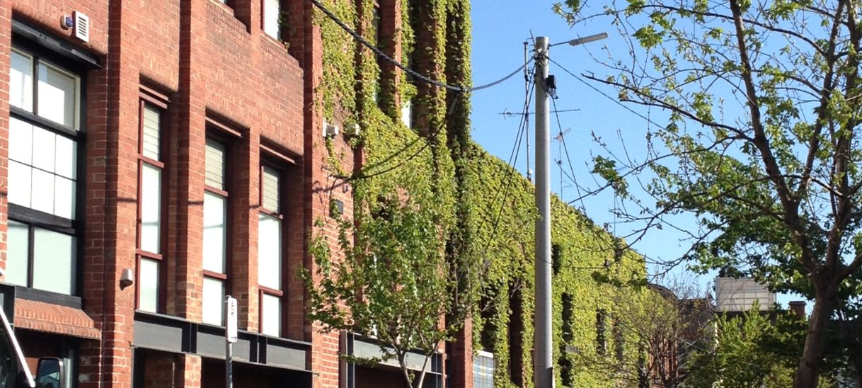 Evaluating the success of urban greening