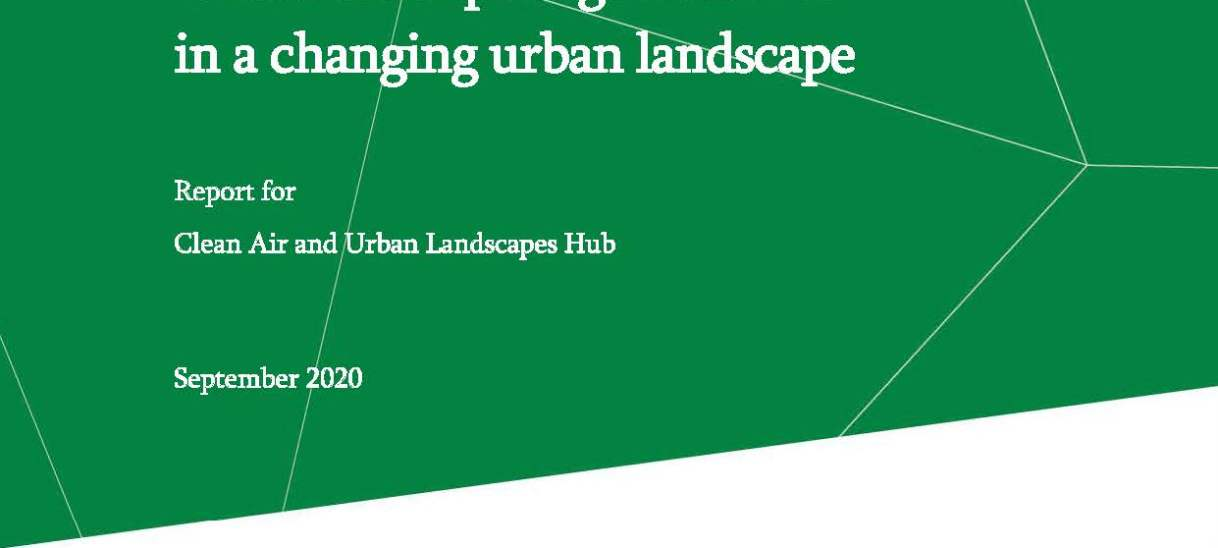 Green-blue space governance in a changing urban landscape