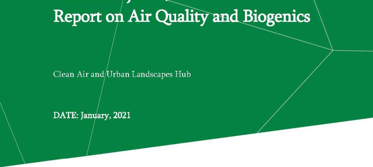 Report on air quality and biogenics