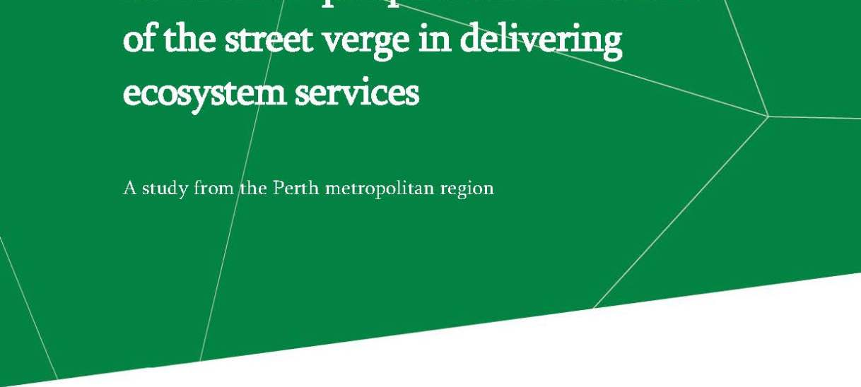 Stakeholder perspectives on the role of the street verge in delivering ecosystem services