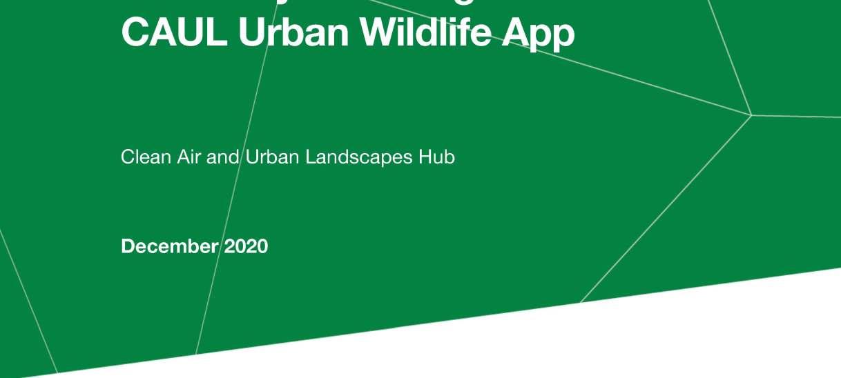 Summary of findings from the CAUL Urban Wildlife App